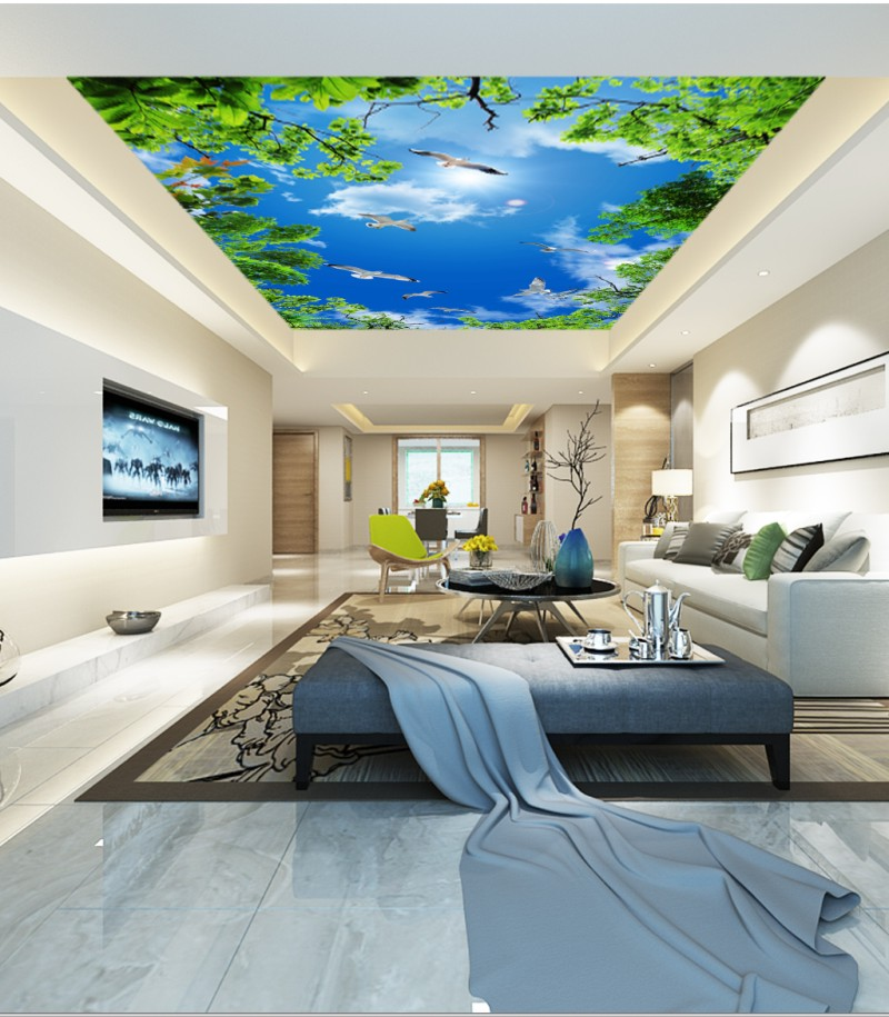 Blue Sky White Clouds Seagull Living Room Bedroom Ceiling Mural 3d