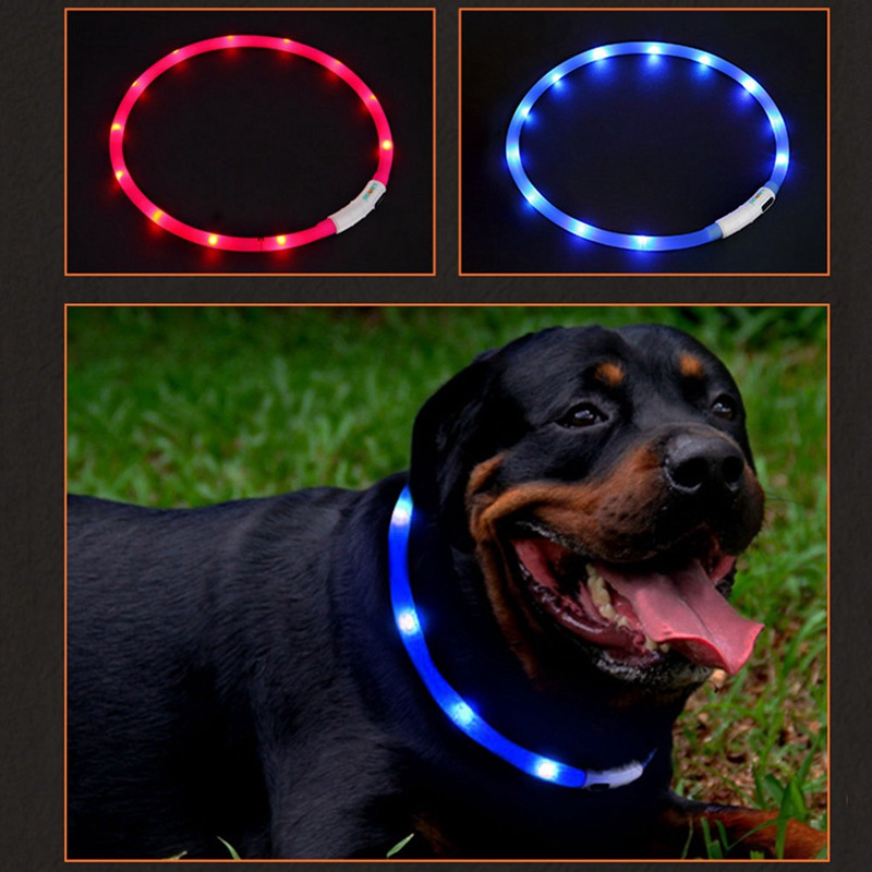 LED Pet Collar USB Rechargeable Night Safety Warning Illuminated Dog Adjustable Silicone Collar Cut to Resize|Collars|   - AliExpress