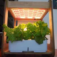 Lámpara de crecimiento de plantas de espectro completo para la plantación de vegetales caja de invernadero de interior equipo hidropónico para plantar maceta