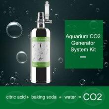 лучшая цена Professional Aquarium Co2 Generator System Kit 2L  Carbon Dioxide Reactor Kit For Plants Aquarium With Solenoid Valve Atomizer