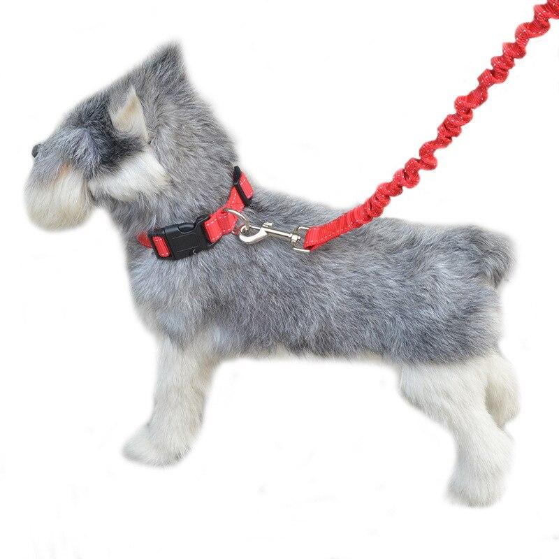 Pet Buffer Neck Ring Traction Set Dog Buffer Single-head Elasticity Hand Holding Rope Nursing Convenient Convenient Safe