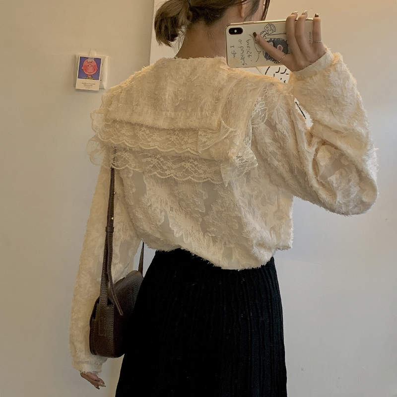 H85a44ad1c0b3458092227f500d843e94S - Spring / Autumn Ruffled Collar Puff Sleeves Lace See Through Blouse