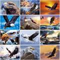 DIY Owl Animal 5D Diamond Painting Full Round Rhinestone Mosaic Eagle In The Sky Diamond Embroidery Cross Stitch Home Decor