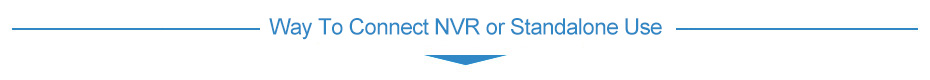 Way To Connect NVR or Standalone Use