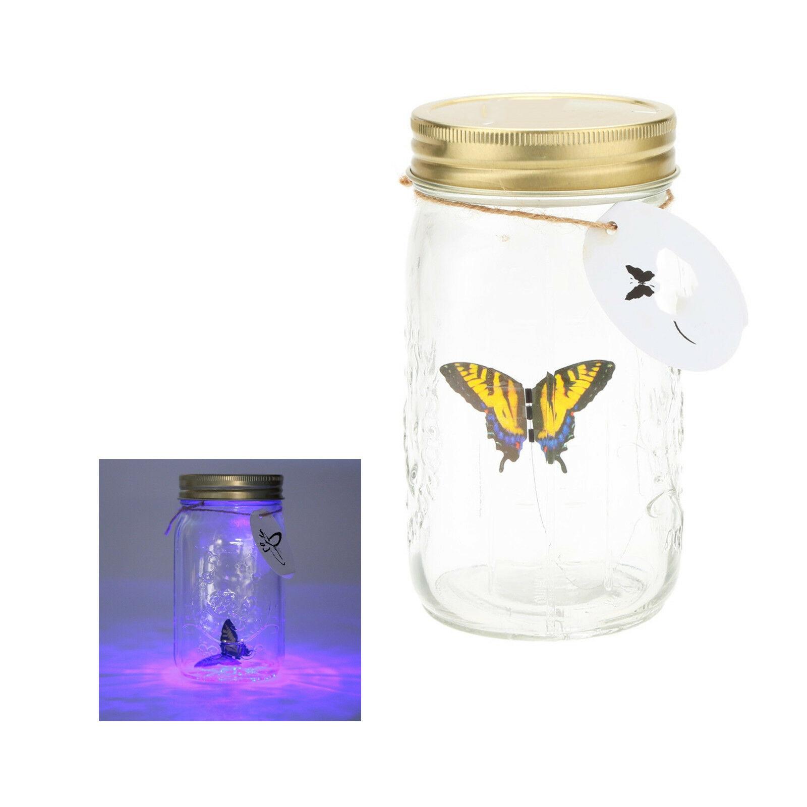 Kelebihan Kupu-kupu Lampu Kaca