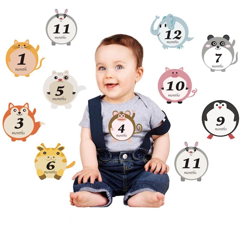 12 Pcs Newborns Month Sticker Baby Photography Milestone Memorial Monthly Photo Cartoon Flower Scrapbook Props Album Accessories