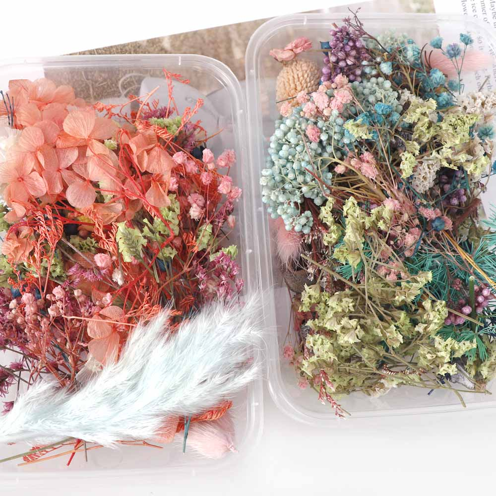 1 Box Mix Beautiful Real Dried Flowers Natural Floral For Art Craft Scrapbooking Resin Jewelry Craft Making Epoxy Mold Filling