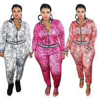 PLUS SIZE, Pink Outfits for Women Plus Size 3XL 4XL 5XL Oversize Leopard Two Piece top and pants Set Women 2020 Autumn Winter fall Clothing 1