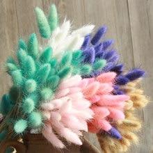 30 Pçs/lote Flores Secas Naturais Cauda de Coelho Grama Bando Colorido Lagurus Ovatus Real Buquê de Flores para Decoração de Casamento Em Casa