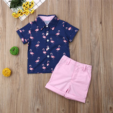 Baby Peuter Kid Baby Boy Tops Korte Mouw Flamingo T-shirt + Shorts Broek Zomer Outfits Kleding 1-6T(China)