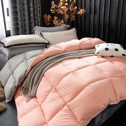 95% White Goose Down Quilted Comforter Solid color Thicken Winter Quilt King Queen Twin Full Size for Home hotel High-end Duvets