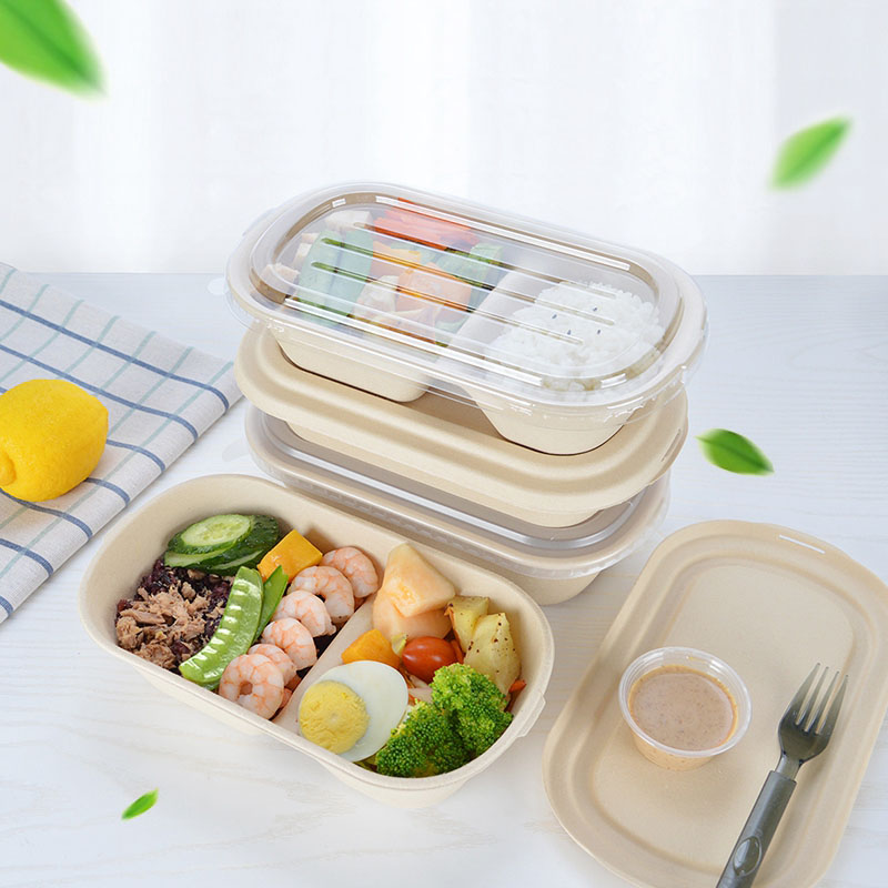 10 PCS Bento Box Eco-Friendly Lunch Box Food Container Disposable Pulp Microwavable Dinnerware Home Healthy Material Lunch Box