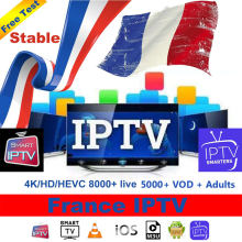 Iptv frança m3u assinatura 8000 + viver 5000 vod com adulto 1 ano abonnement para iptv smarters android m3u smart tv ip tv(China)