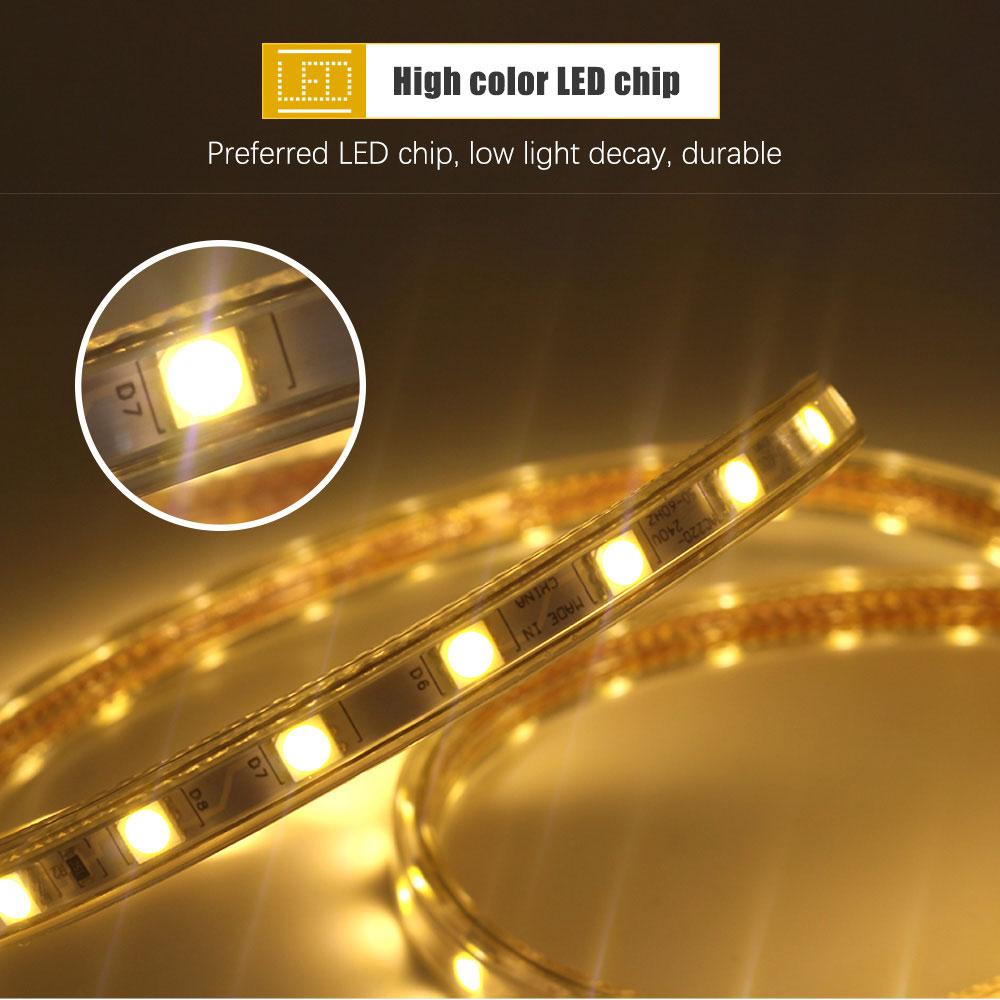 H8625daeb20b54ada8b80e219a6c2980cN 220V LED Strip Light SMD 5050 Outdoor Waterproof LED Ribbon 60Leds/M high brightness outdoor indoor decoration with EU Plug
