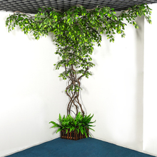 5m Natural  Dried Dry Tree Branches Flower Vine Rattan Grape Twigs DIY Decor Plantas Artificiales Para Decoracion