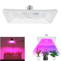 1 sztuk lampy do uprawy pełne spektrum oświetlenie roślin światło rozproszone oświetlenie led do uprawy Fitolampy dla roślin kwiaty sadzonka uprawa w Lampy LED do hodowania roślin od Lampy i oświetlenie na