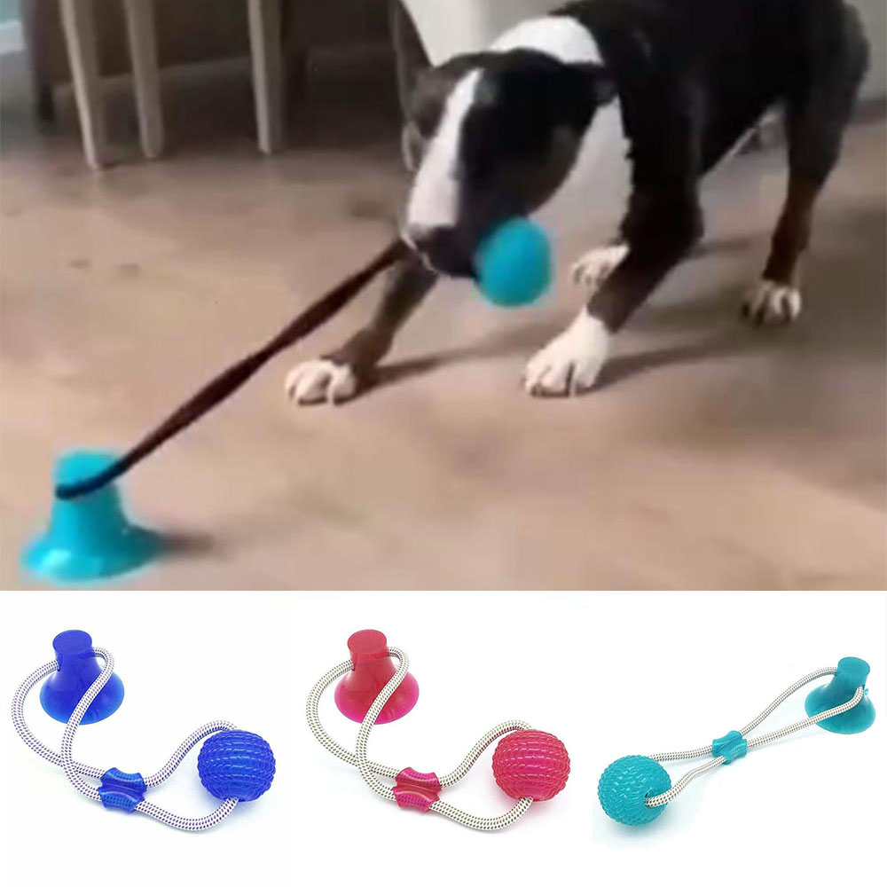 Dog Interactive Suction Cup Push TPR Ball Toys Elastic Ropes Dog Tooth Cleaning Chewing Playing IQ Treat Toys Pet Puppy Supplies(China)