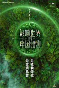 影响世界的中国植物[连载03集]