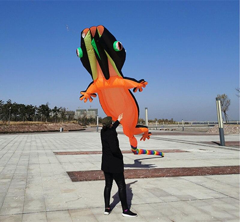 kite cor animal pipa esportes ao ar