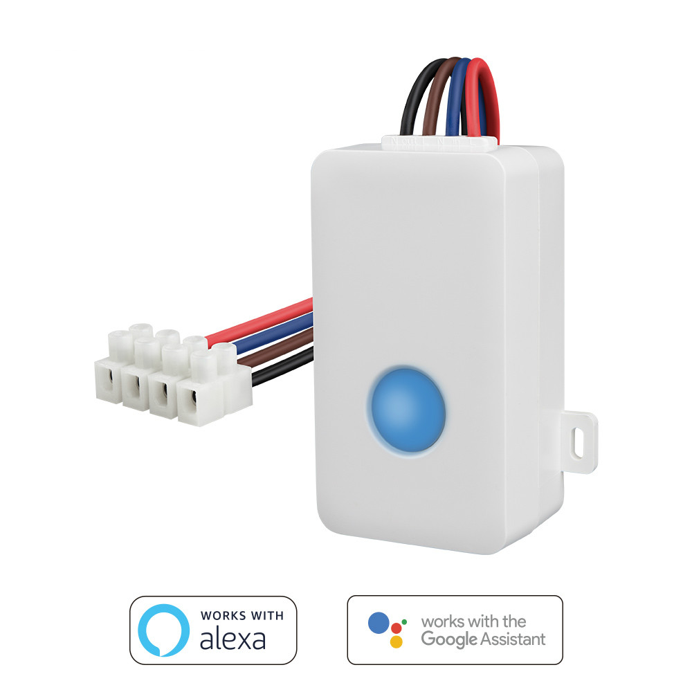 Smart Switch Light Control WiFi APP 2.4 GHz Control Box Timing Draadloze Afstandsbediening 2500W Ondersteuning IOS Android