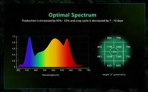 Image 2 - BestVA LED grow light Full Spectrum 600W/1000W/1200W/1500W/2000W/3000W/4000W Phytolamp for indoor plants seed flower grow tent