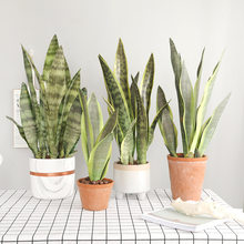 Artificial Plants for Home Garden Decoration Sansevieria Branch Fake Plants Plastic Leaves DIY Bonsai Plants