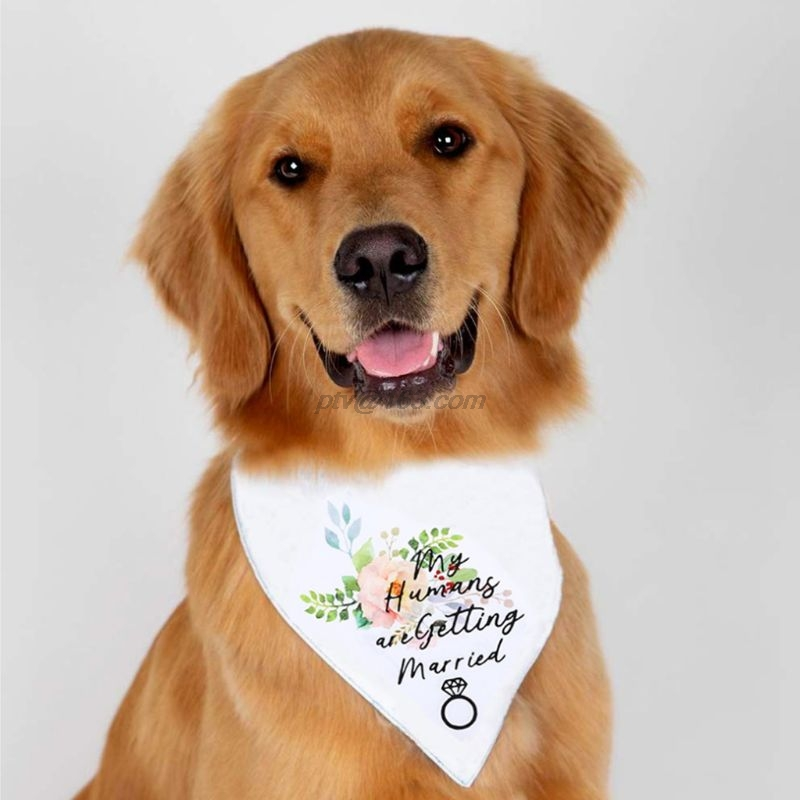 Double Layers Dog Bandana My Humans are Getting Married Letters Floral Wedding Triangle Bibs Scarf Valentine Neckerchief