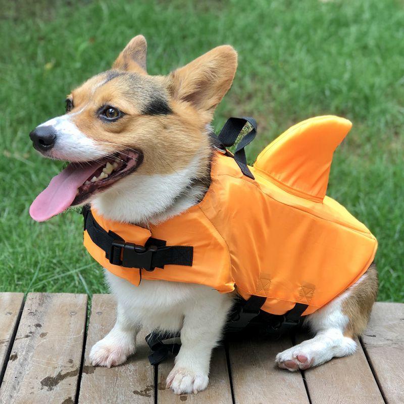 dog life jacket,