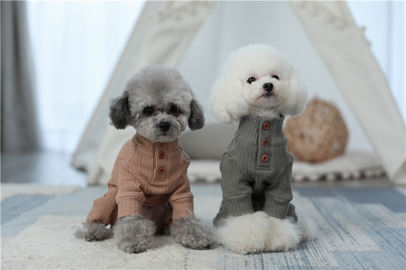 small puppy jumpsuit four legs (3)