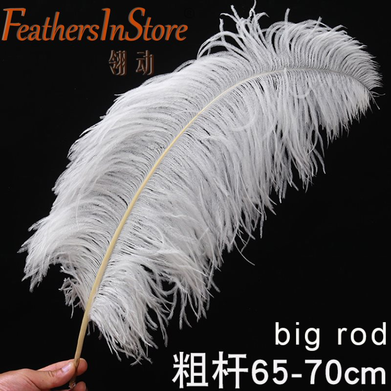 10Pcs  All Size 15-75CM 6-30inch White Ostrich Feathers For Crafts Carnival Party Halloween Wedding Decorations Jewelry Plumes