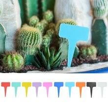 Etiqueta Premium para guardería, etiqueta de plástico tipo T, maceta para planta de jardín, etiqueta vegetal, 50 uds.