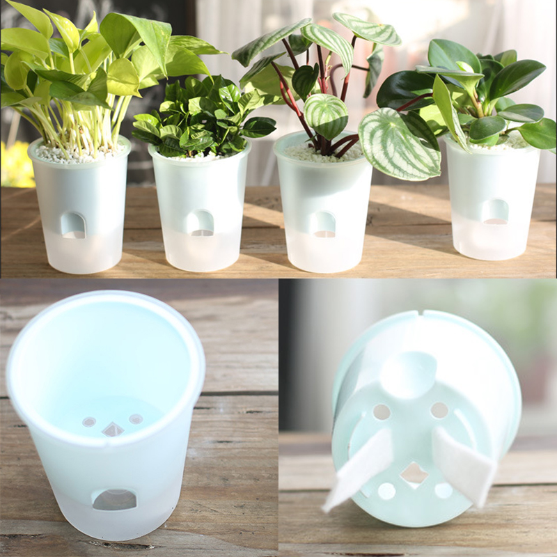Suction Cup Self Watering Planters Flower Pots Herb Planter Plant Pots Water Automatic Indoor Decor Hydroponic
