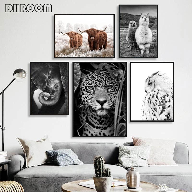 Плакат и принт животных ягуар корова Милая Альпака черная белая Настенная картина для детской картины на холсте для гостиной домашний деко...