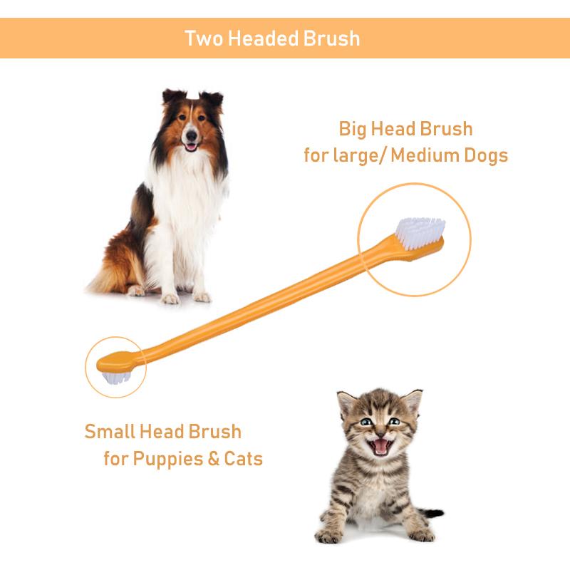 Juego de pasta de dientes y cepillo de dientes para perro 3