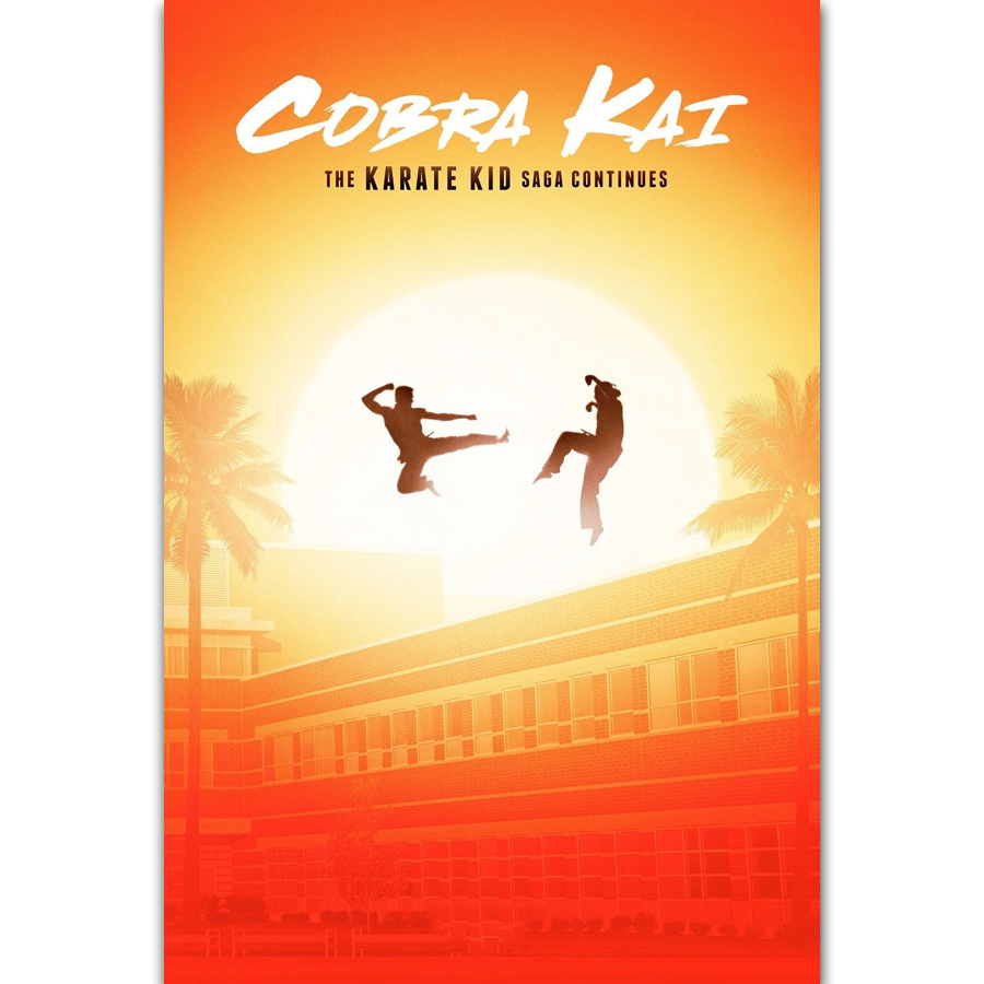 All Valley Karate Championship 12x18 24x36inch Classic Movie Silk Poster