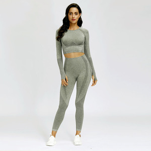 Women Seamless Yoga Set Fitnes