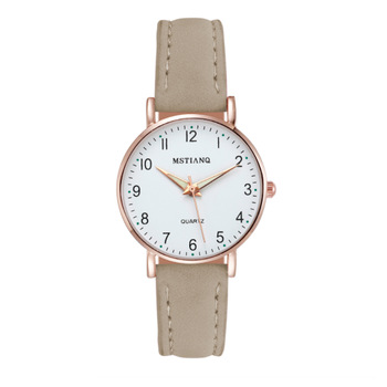 2020 NEW Watch Women Fashion Casual Leather Belt Watches Simple Ladies' Small Dial Quartz Clock Dress Wristwatches Reloj mujer - AAAD3