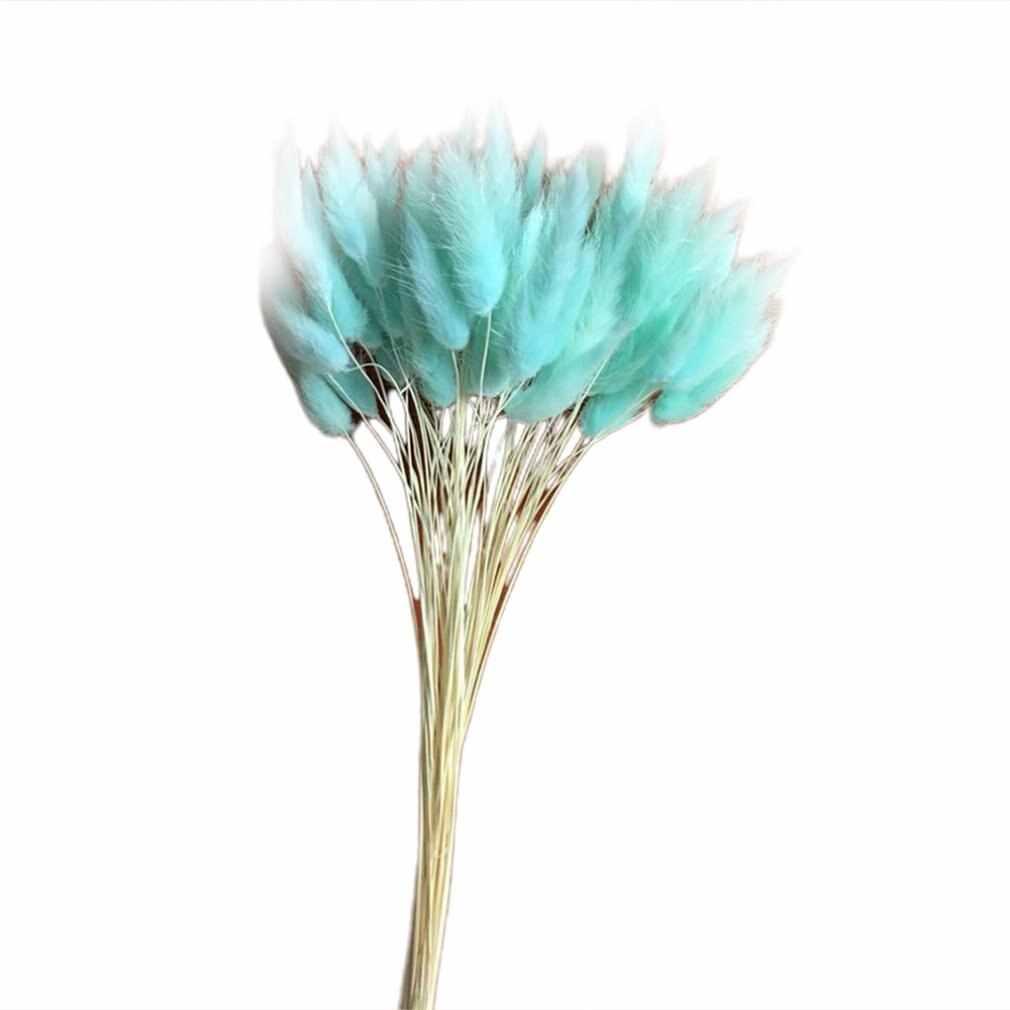 30 יח'\חבילה שיפוע Ovatus Lagurus טבעי פרחים מיובשים זר חתונה עיצוב הבית ארנב זנב דשא פרחים אמיתיים