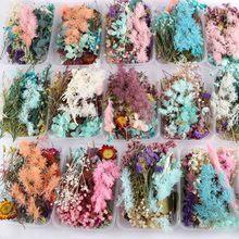 Ornament Flower Photo-Frame Crafts Dry-Plants Home-Decor Wedding Real-Dried DIY Handmade