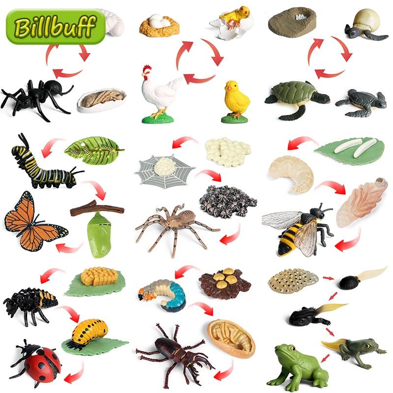 Новый цикл роста насекомых, набор моделей жизненного цикла, лягушка, муравей, комаров, морская черепаха, модель, фигурки, Детский обучающий м...