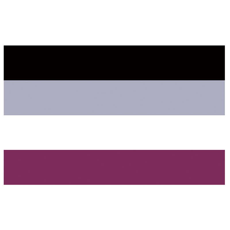 free shipping Aerlxemrbrae <font><b>flag</b></font> 90*150cm LGBTQIA Ace Community nonsexuality Asexuality <font><b>asexual</b></font> <font><b>pride</b></font> <font><b>Flag</b></font> image