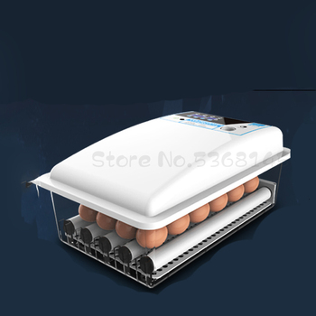 Warm Cube Incubator Small Household  Automatic Intelligent Chicken  Egg