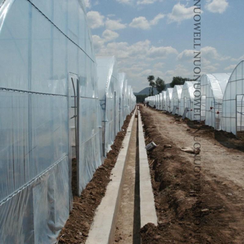 厚さ 0.1 ミリメートル農業温室フィルムファーム作物野菜植物カバー透明ターポリンフィルム幅: 2 メートル〜 12 メートル