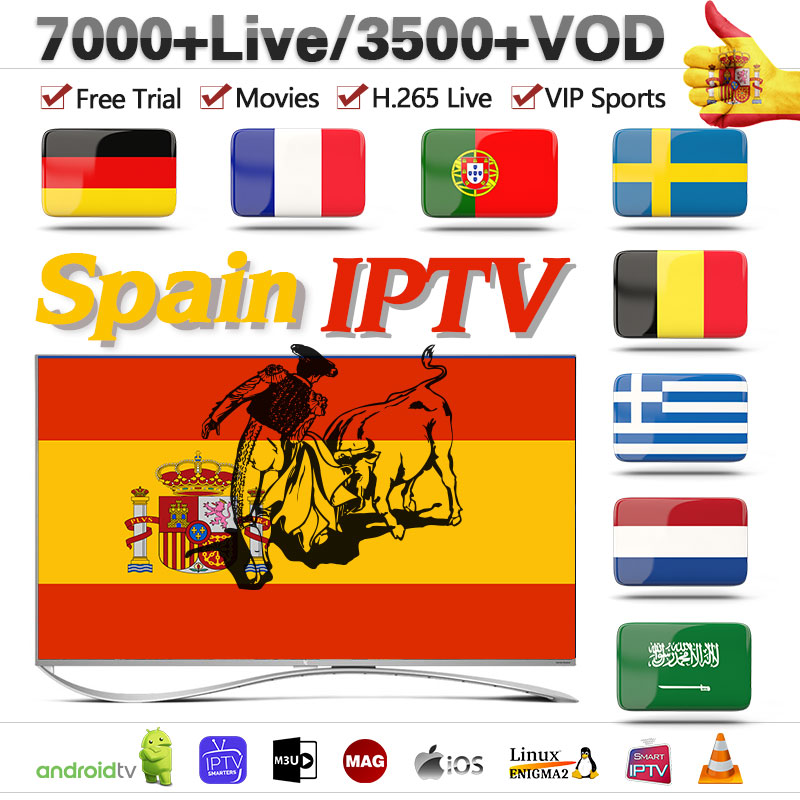 Europe IPTV Spain Portugal France Germany IPTV M3u Subscription 1 Year IPTV Spanish Sweden Albania Turkey Spain IP TV Code