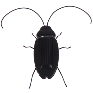 Educational Solar Insect Kids