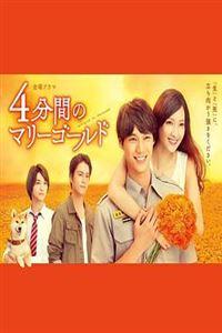 四分钟的金盏菊[10]