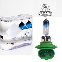 9005 12V 65W 700lm 4300K Warm White Light Car Halogen Headlights - Green + Silver (2 PCS)
