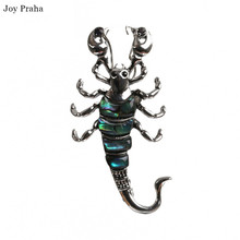 Hot selling abalone shell women brooch / Simple series scorpion