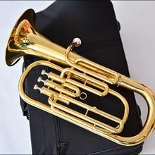 LAIIMAN высокое качество euphonium B плоский три вертикальных ключа тенор-Горн Холдинг Труба латунь инструмент индивидуальные Logonts чехол
