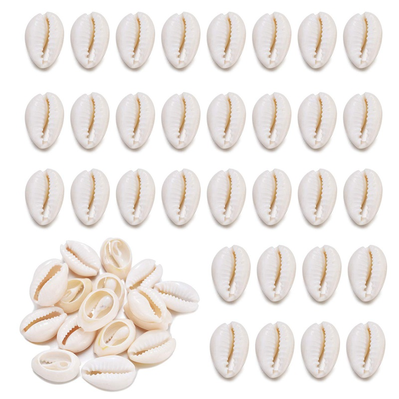 50Pcs Cowrie Shell Beads Natural Tiny Sea Spiral Seashells Charms For DIY Jewelry Making Crafts Fish Tank Vase Filler Decor